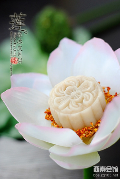 Лотосов цвет је инспирација декоративних посластица